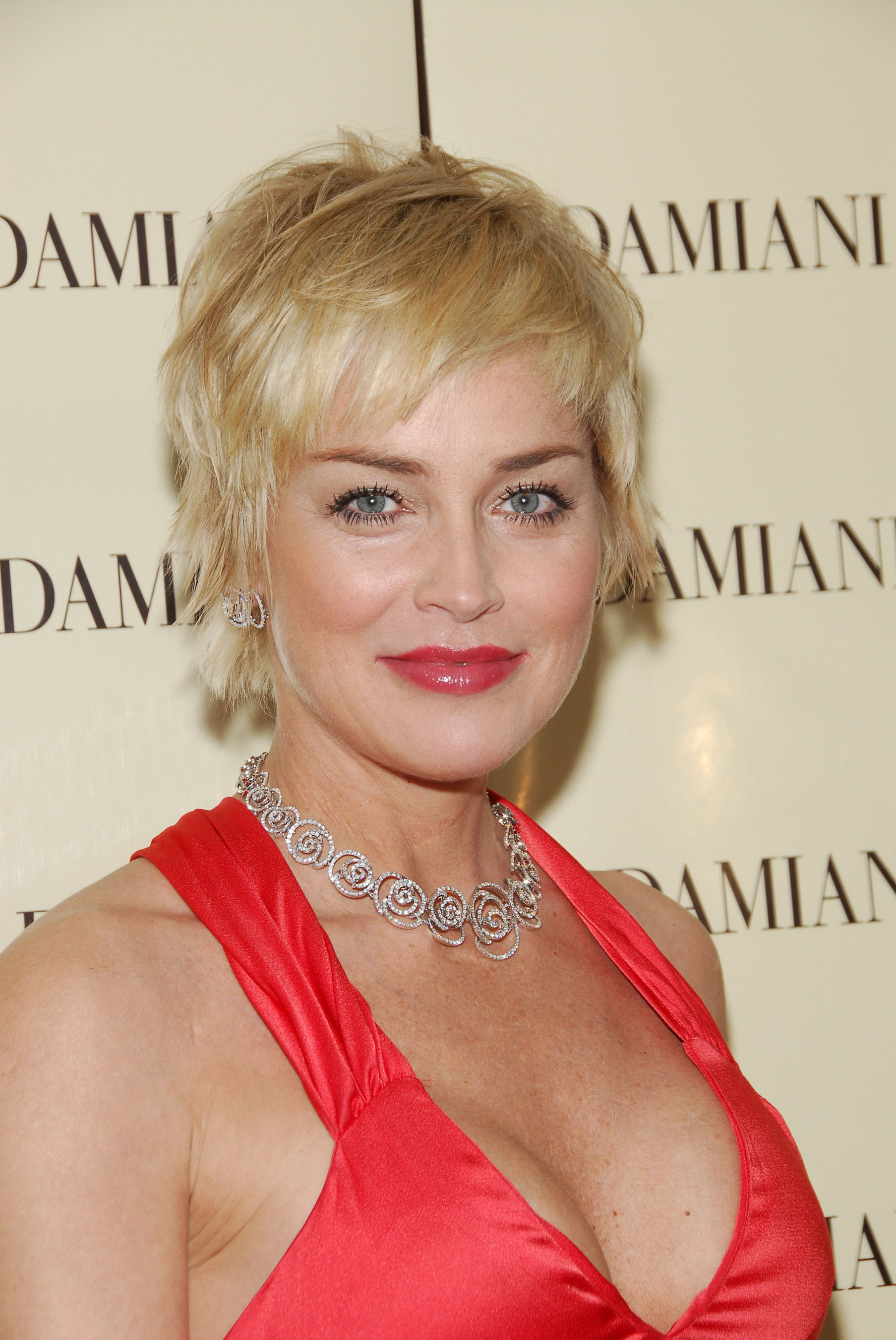 Sharon Stone Loses Physical Custody Of Son Entertainment