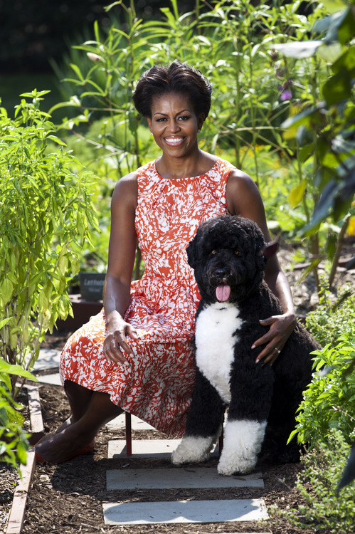 Michelle obama amp bo in new official white house portrait